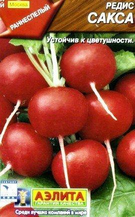 выращивание редиса в теплице - семена сорт сакса