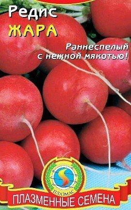 выращивание редиса в теплице - семена сорт жара