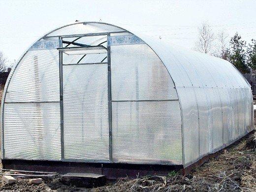 выращивание редиса в теплице - весной