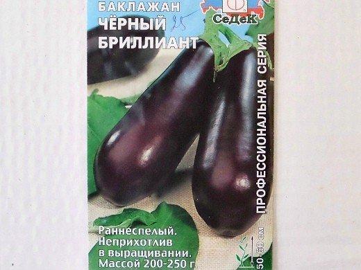 выращивание баклажанов в открытом грунте - сорт черный бриллиант