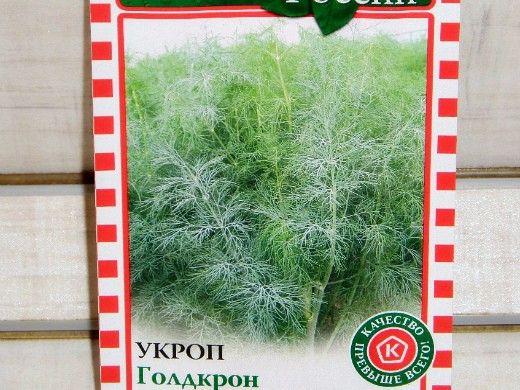 технология выращивания зелени в теплице - укроп сорт голдкрон