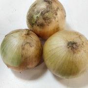 лучшие сорта лука репчатого 1-2