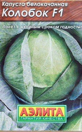 выращивание капусты в открытом грунте - сорт колобок f1