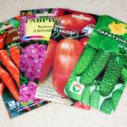 как правильно вырастить рассаду любых овощей