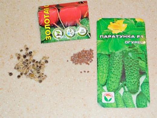 всхожесть семян цветов и овощей - огурцы сорт паратунка f1