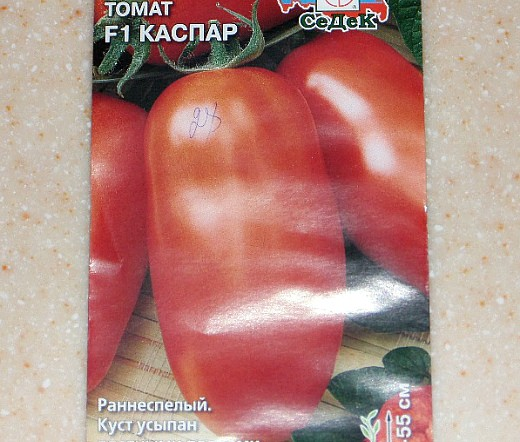 фитофтора на помидорах как бороться - устойчивый к болезни сорт томата каспар