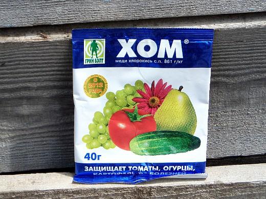фитофтора на помидорах как бороться - медьсодержащиий препарат хом