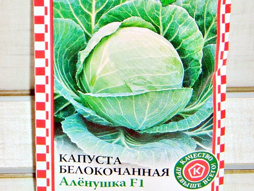 выращивание рассады капусты в домашних условиях - белокочанная семена сорт f1 аленушка