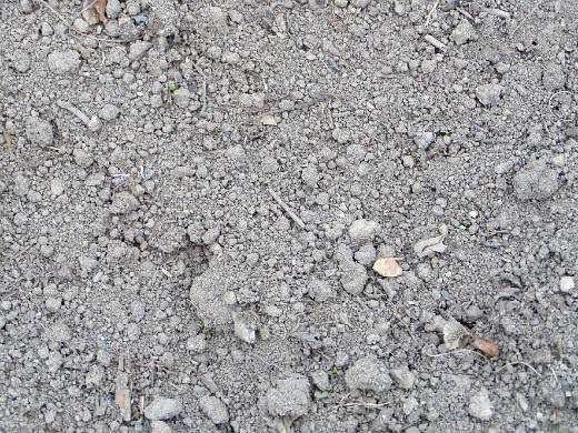 как определить кислотность почвы на участке - земля