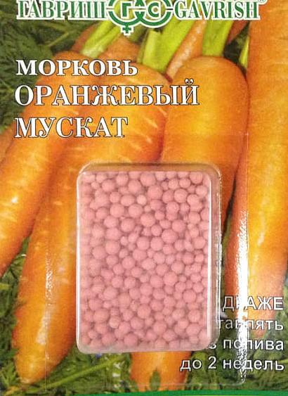 лучшие сорта моркови для открытого грунта, с описанием - оранжевый мускат