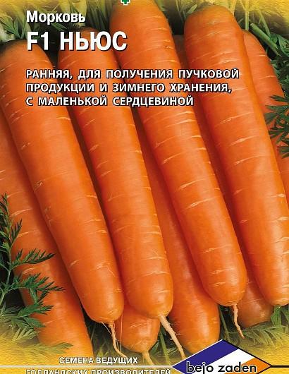 лучшие сорта моркови для открытого грунта, с описанием - ньюс f1