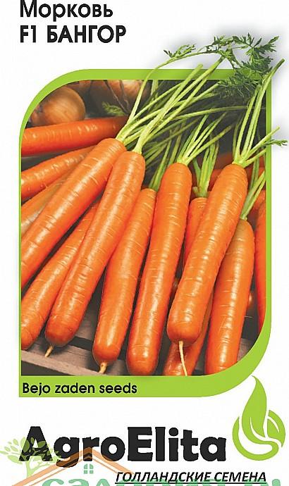 лучшие сорта моркови для открытого грунта, с описанием - бангор f1