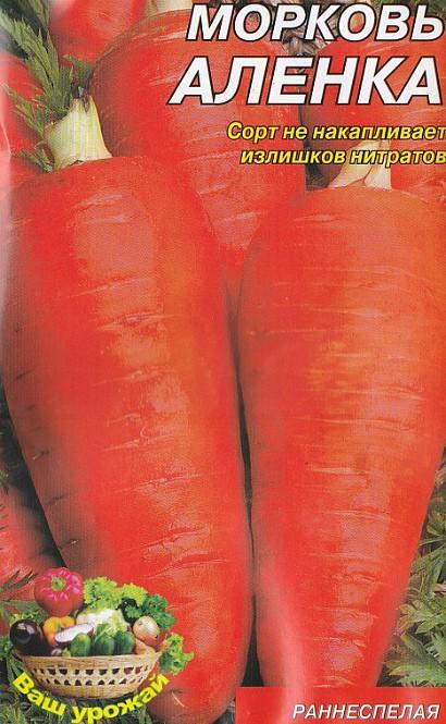 лучшие сорта моркови для открытого грунта, с описанием - аленка