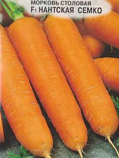 лучшие сорта моркови для открытого грунта, с описанием - нантская семко f1