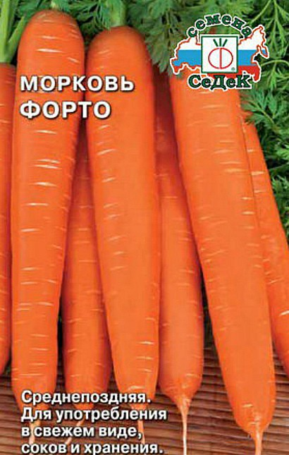 лучшие сорта моркови для открытого грунта, с описанием - форто