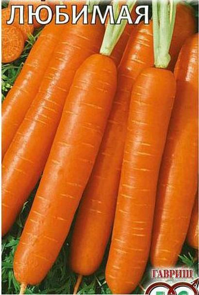 лучшие сорта моркови для открытого грунта, с описанием - любимая