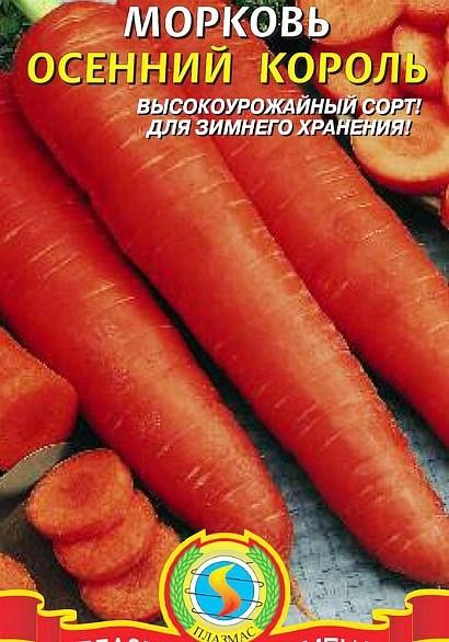 лучшие сорта моркови для открытого грунта, с описанием - осенний король