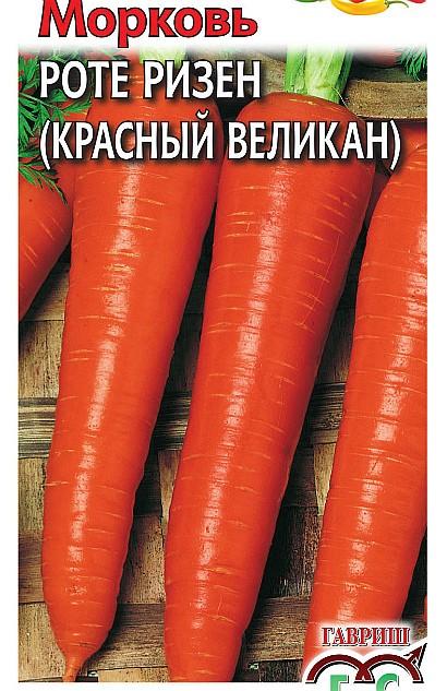 лучшие сорта моркови для открытого грунта, с описанием 32 - роте ризен (красный великан)