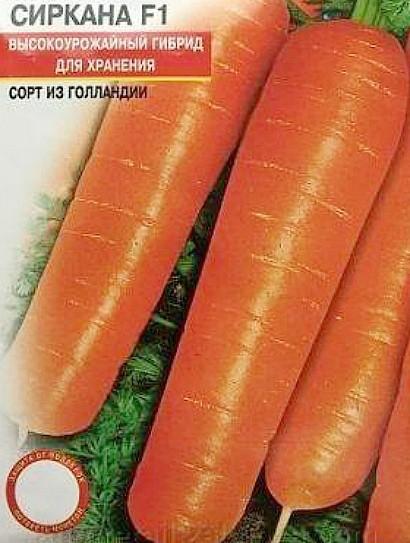 лучшие сорта моркови для открытого грунта, с описанием - сиркана f1