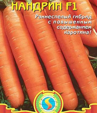 лучшие сорта моркови для открытого грунта, с описанием - нандрин f1
