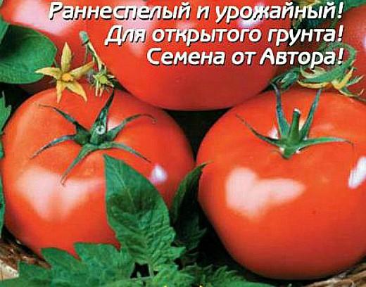 мелкоплодные сорта высокорослых томатов для открытого грунта и теплиц - иришка