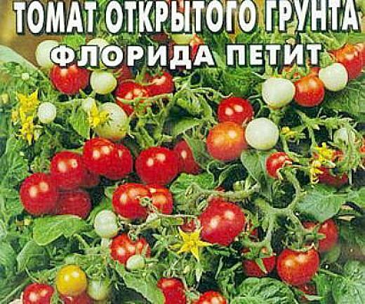 мелкоплодные сорта низкорослых томатов для открытого грунта - флорида петит