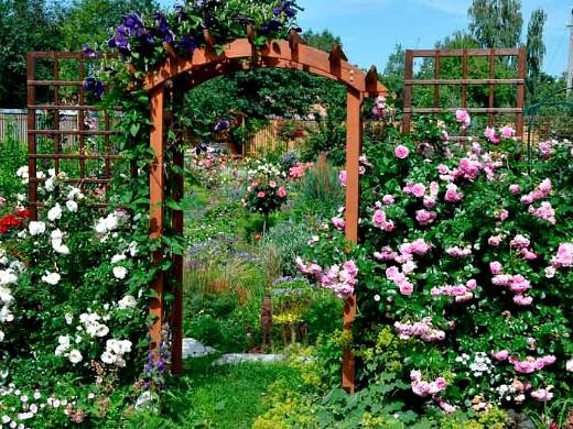опоры для вьющихся растений и цветов 1-5