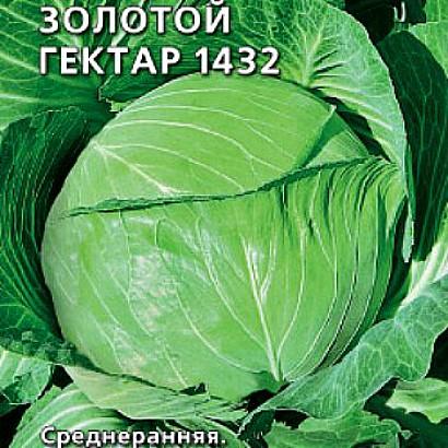 лучшие сорта капусты с названием, фото и описанием - золотой гектар 1432, лучшие сорт