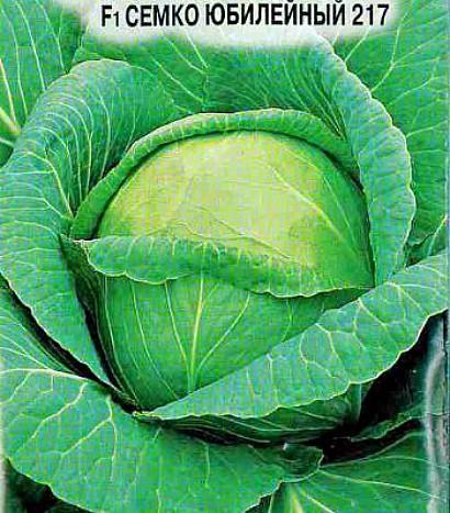 лучшие сорта капусты с названием, фото и описанием - f1 семко юбилейный 217