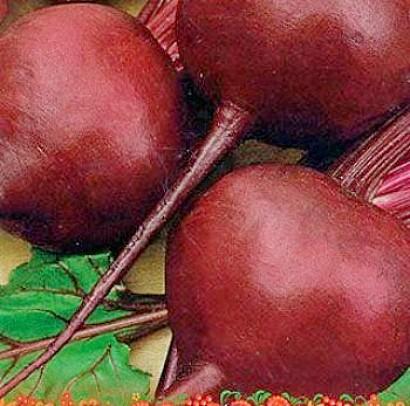 сорта свеклы лучшие, с описанием и фото - семена барыня