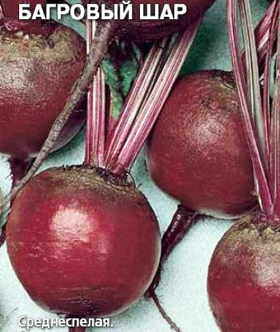 сорта свеклы лучшие, с описанием и фото - семена багровый шар
