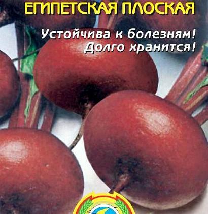 сорта свеклы лучшие, с описанием и фото - семена египетская плоская