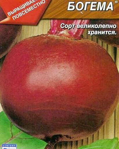 сорта свеклы лучшие, с описанием и фото - семена богема