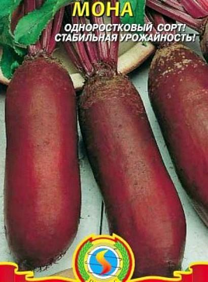 сорта свеклы лучшие, с описанием и фото - семена мона