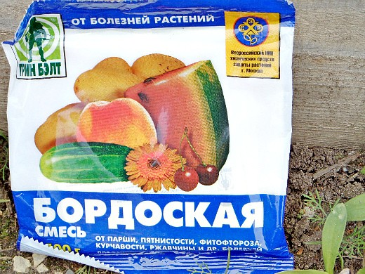 фунгициды для растений, названия - бордоская смесь