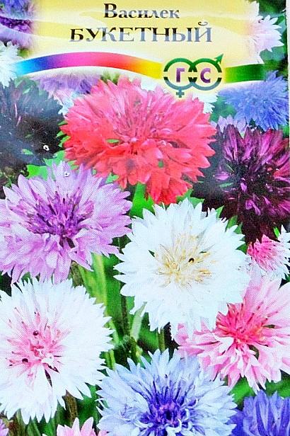 цветы васильки, выращивание - семена, сорт букетный