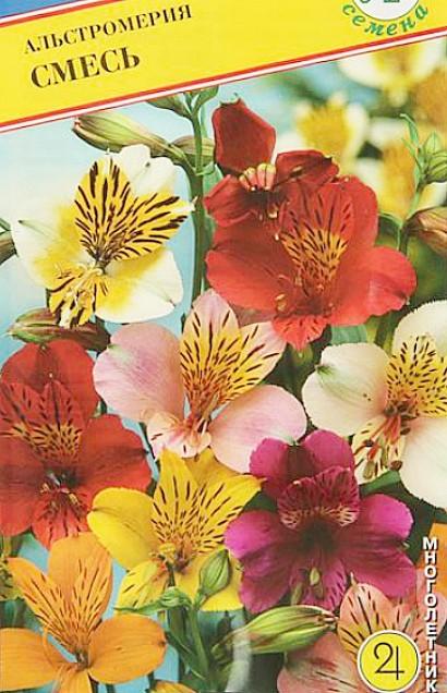 цветы альстромерия, выращивание - смесь семян
