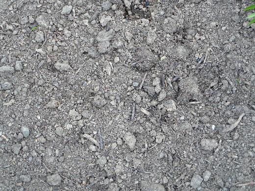 повышение плодородия почвы - компост