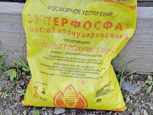 борьба с проволочником на участке - суперфосфат