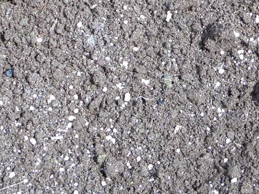 обширное удобрение грунта для посадки и выращивания картофеля