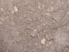 Опишите технику подготовки почвосмеси или почвогрунта — Портал о стройке