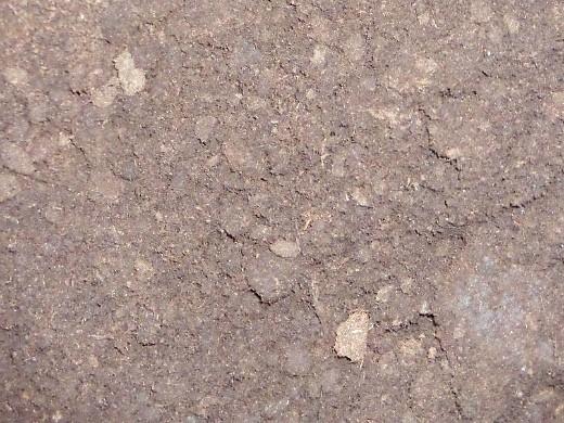 состав и виды почвогрунта - дерн и перегной