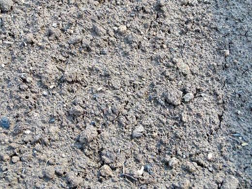 состав и виды почвогрунта - наша земля на даче