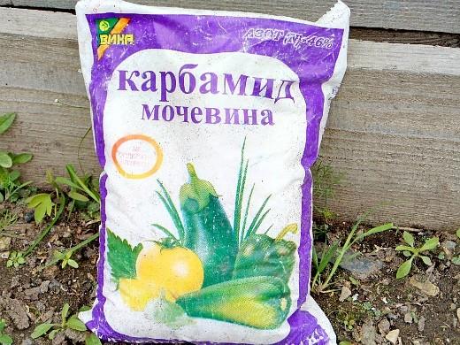 удобрения для огурцов в закрытом и открытом грунте - мочевина (карбамид)