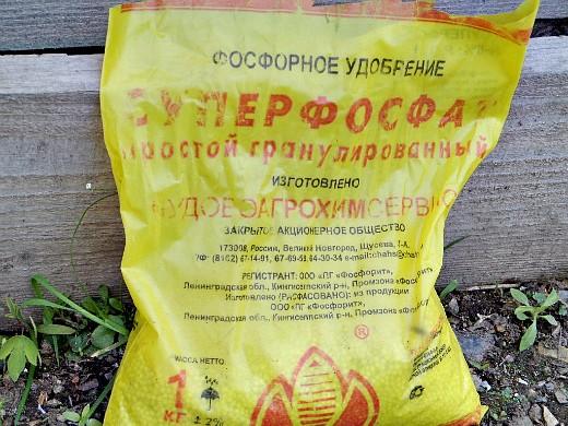 удобрения для огурцов в закрытом и открытом грунте - суперфосфат