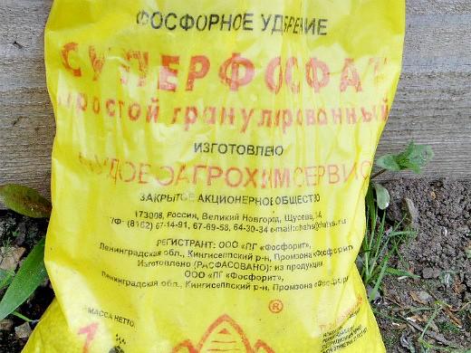 удобрения для посадки и выращивания картофеля - суперфосфат