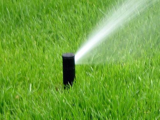 автоматический полив газонной травы водой 1
