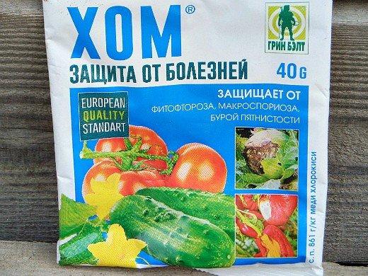 почему скручиваются листья у помидоров, препарат хом от фитофторы