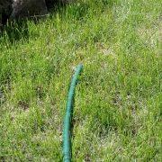 полив травы газона - шланг для воды 1