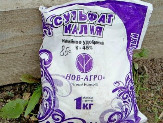 удобрения для петуний при выращивании - сульфат калия